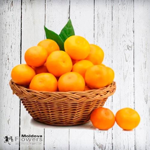 Orange basket